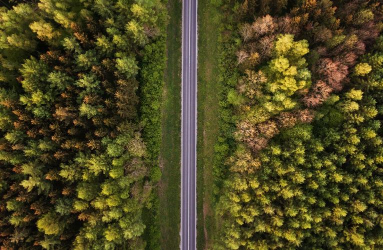 La dénonciation des infractions routières